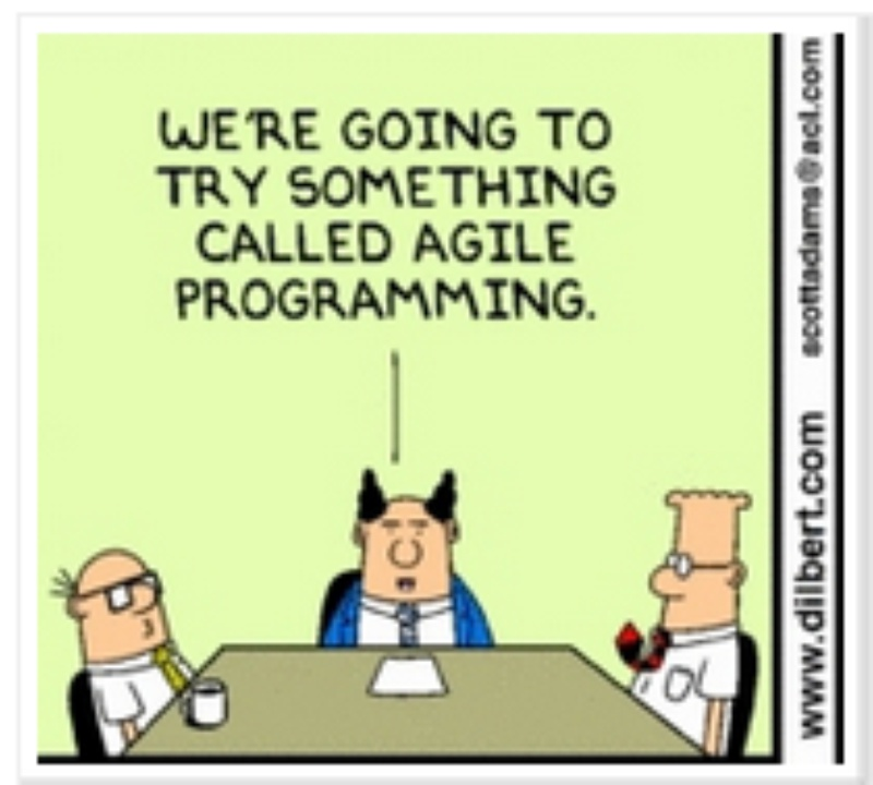 31 Ideas Para Mejorar Tu Vida Profesional Y La De Tu Empresa El Manual Del Estratega besides Hewlett Packard And The Many Curious Paradoxes Of Micro Management together with Lean Process Quotes besides Dilbert And Big Data also The Importance Of Listening By Dilbert. on dilbert coaching